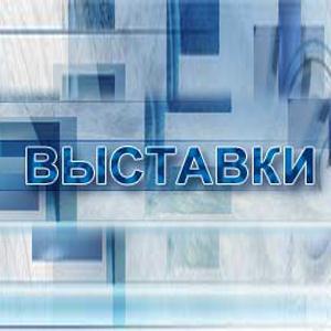 Выставки Новохоперска